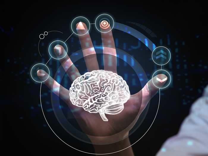 Científicos chinos logran reconstruir lo que está viendo una persona utilizando un escáner cerebral