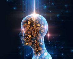 Google Brain: un modelo para enseñarlos a todos