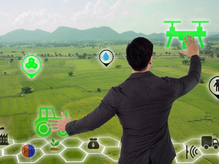 Agricultura de precisión: cómo la inteligencia artificial revoluciona la agricultura