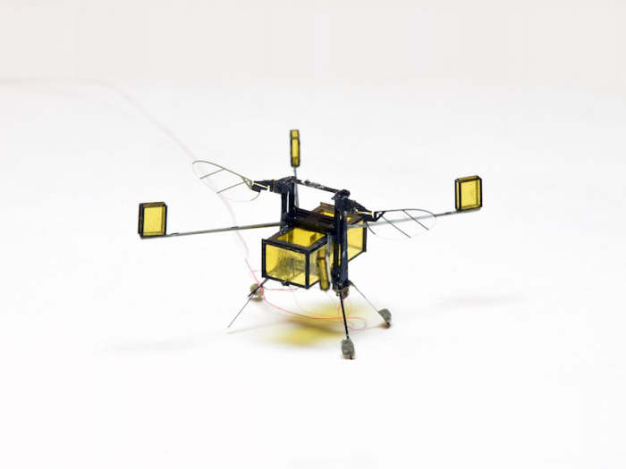 RoboBee, el asombroso microrobot que vuela, nada, bucea y sale volando del agua